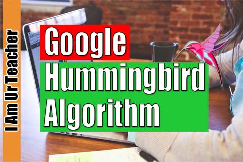 why google hummingbird algorithm was launched