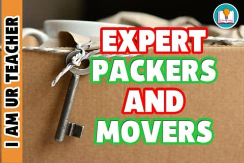 expert packers and movers