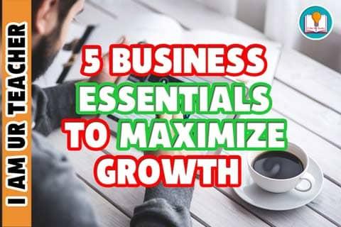 5 business essentials to maximize growth