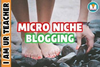 micro-niche blogging